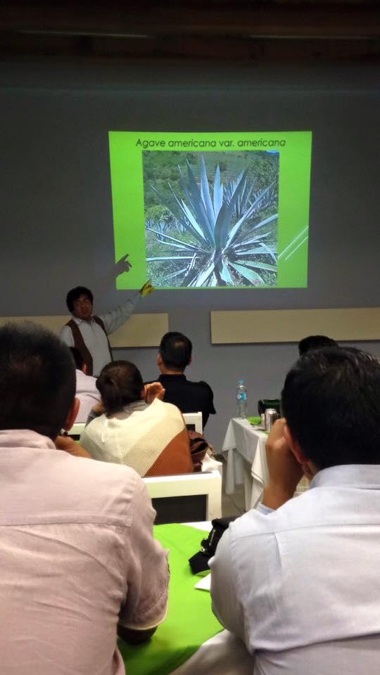 Foto Mezcología 1