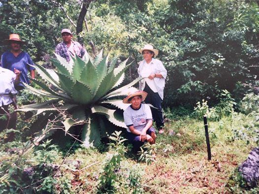 Trabajos de delimitación y regularización del ejido de Mochitlán en 2002.