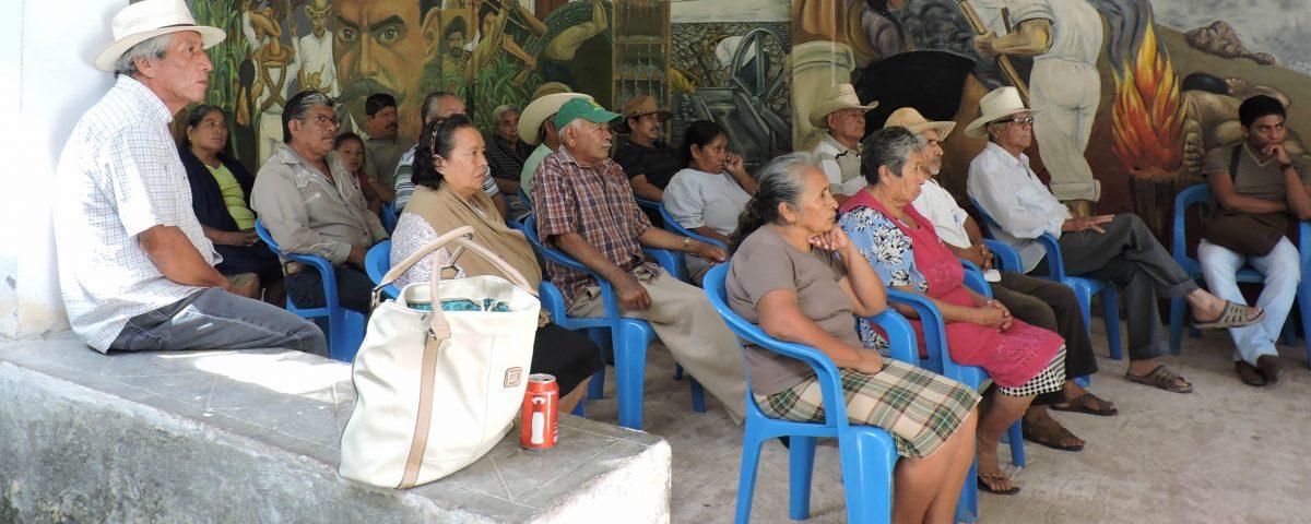 Certificación agroecológica participativa
