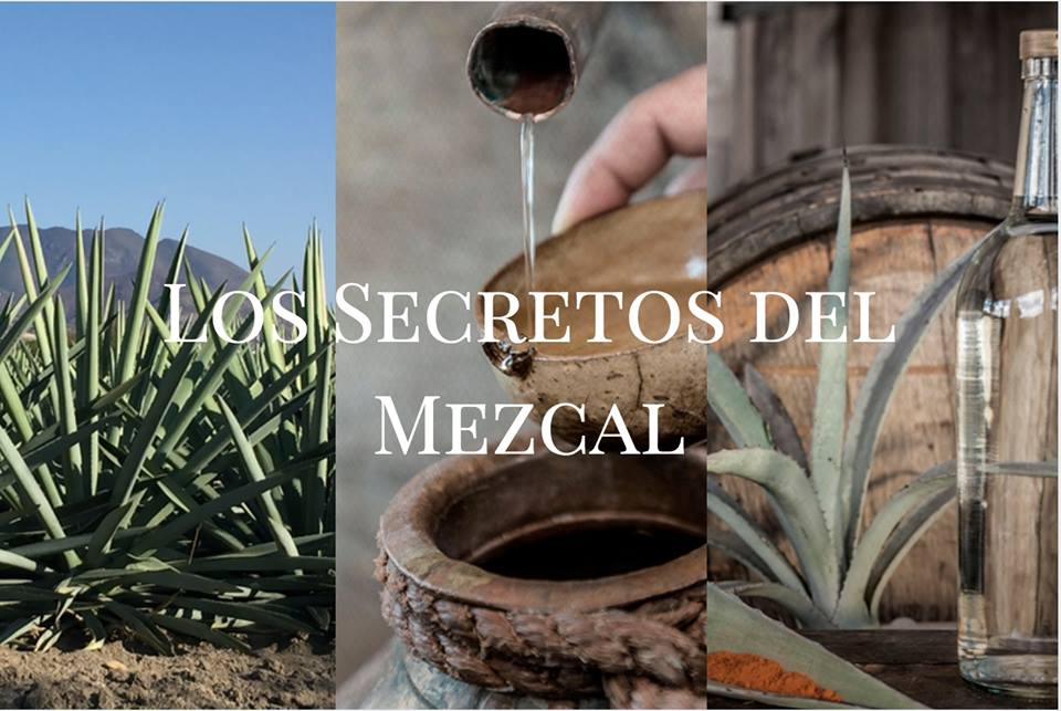 experiencias mezcaleras en Guelaguetza