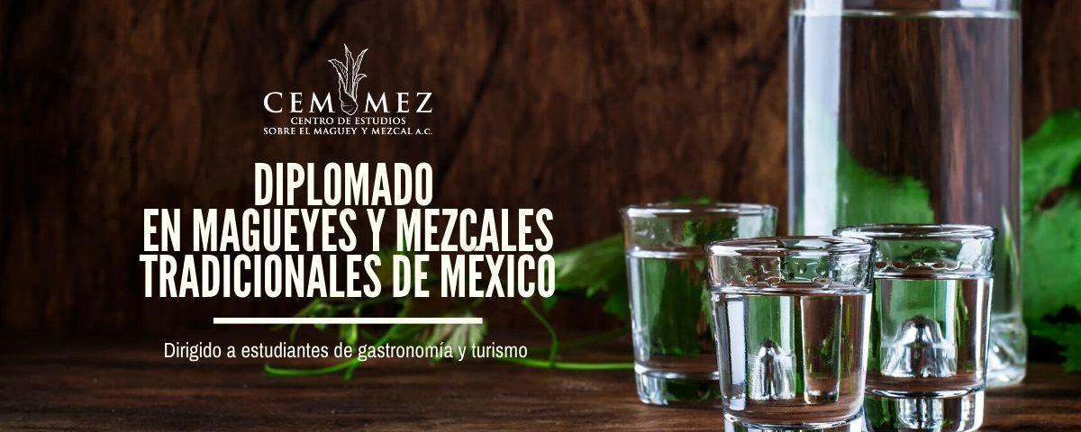 Diplomado en magueyes y mezcales tradicionales de México